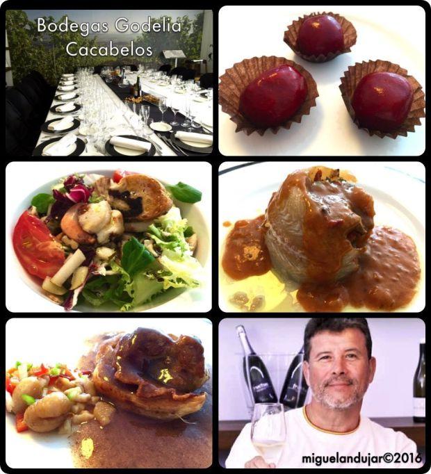 bodegas-godelia-gastronomia