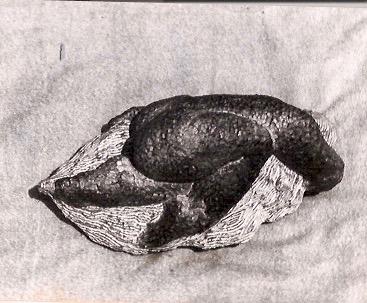 Historia Artistica Miguel Ángel Betancur T. Escultor 9