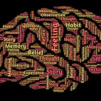 Credibilidad del testimonio y la psicología forense