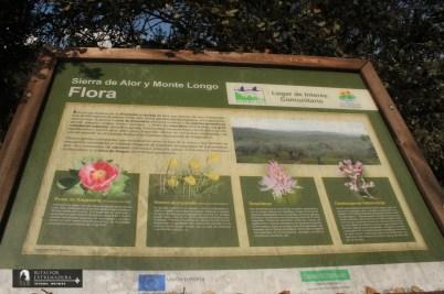 Flora característica de Sierra de Alor