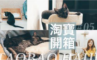 淘寶貓用品開箱 超狂豪宅貓跳台淘寶買才$600?!貓屋/貓砂盆/貓玩具分享
