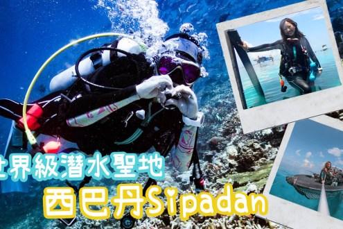 海龜鯊魚捷克魚風暴看到爽! 一天只開放120人世界級潛水聖地馬來西亞西巴丹 Diving in Sipadan Island
