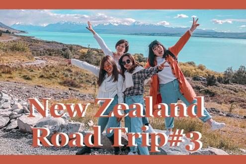 紐西蘭公路旅行 超肥嫩鮭魚大評比 爬庫克山 踩點牧羊人教堂 紐西蘭自駕#3