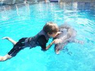 03-david-cu-delfin