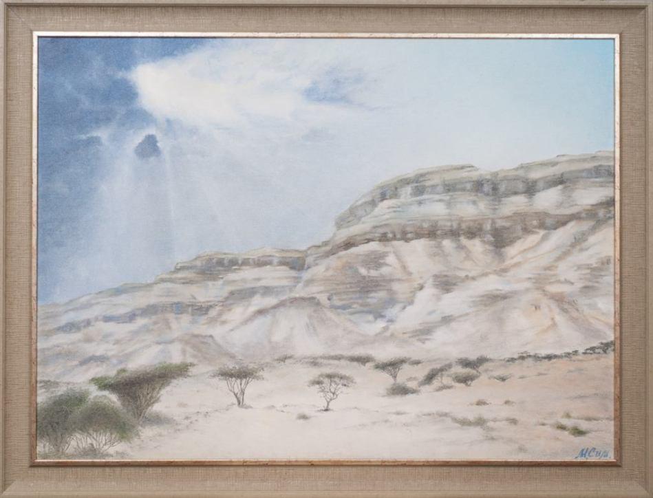 Пустыня Паран