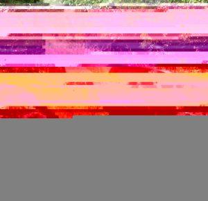 wpid-wp-1409127762979.jpeg