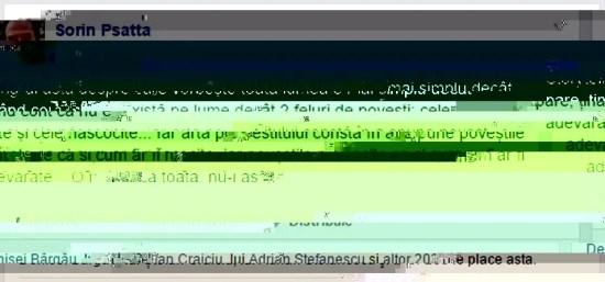 mihai_vasilescu_sorin_psatta
