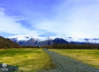 Iceland-day-4--Skaftafell4