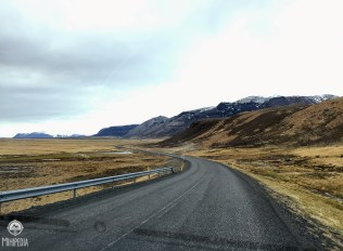 Iceland-day-5--Road3