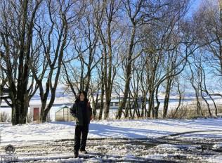 Iceland-day-5--kalaustur3
