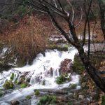 【聖地シャスタ情報】シャスタ山の聖なる水、シャスタクリスタルガイザーの源泉