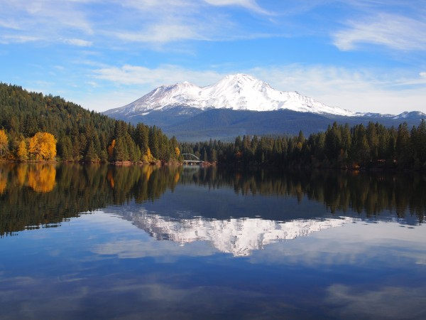シャスタレイクシスキュー、MountShasta Lake Sikiyou