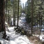 【聖地シャスタ おすすめ】マクラウドの滝(McCloud Falls) ~3月のスペシャルな時間~