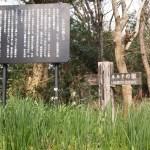 福岡のパワースポット穴場は?ヒーリングと浄化にオススメは?神聖な場所での祈り?