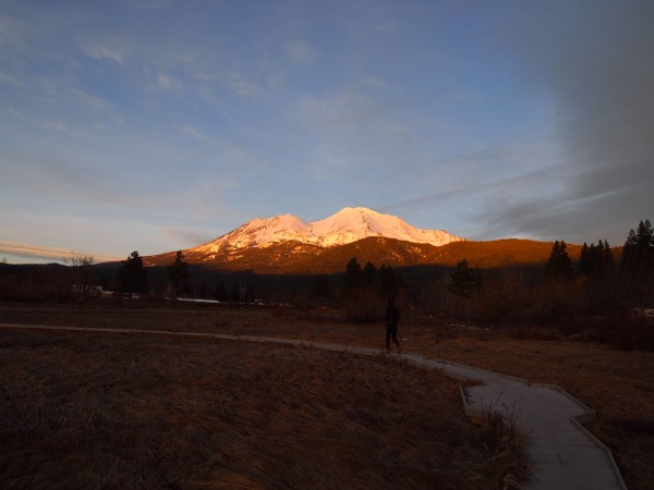 夕日 シャスタ山 Mount Shasta meadow park