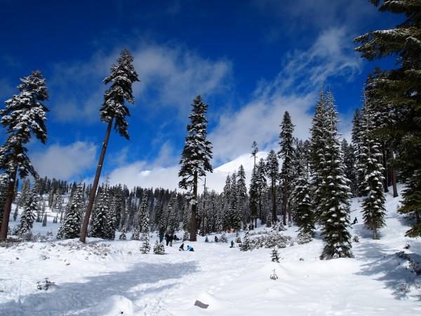 シャスタ山 雪遊び