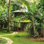 """ハワイでキャンプ?のような夢の""""ツリーハウス""""に宿泊できる!自然たっぷりのロッジとは?"""