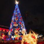 ハワイのクリスマスの過ごし方!7つの楽しみ方!ホテルで食事!イルミネーションはトロリーで♪