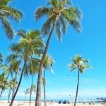6月のハワイ!気温や服装は?料金は?格安な予約方法とイベントやセール情報を紹介します!