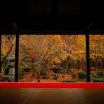 【京都】圓光寺のアクセス!京都駅から市バス?電車?おすすめの行き方は?