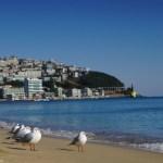 釜山旅行の安い時期っていつ?2泊3日17,300円!いつ予約するのが安い?