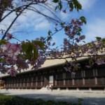 【京都パワースポット】三十三間堂の見どころ!千手観音様に祈って神と繋がる