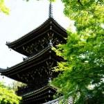 京都新緑の穴場「真如堂」見事な青もみじ!絶景スポット