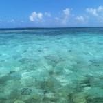 西表島はパワースポット‼ 癒しと浄化!沖縄離島はカウアイ島みたい⁈海と山と川!ジャングル