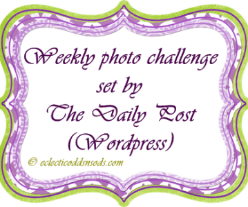 Weekly Photo Challenge: twist ~ A day full of random twists and turns!