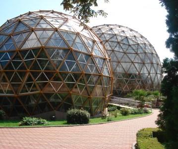 The Amazing Jibou Botanical Garden