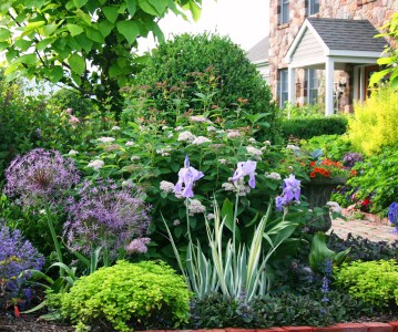 5 Tips to Become a Better Gardener