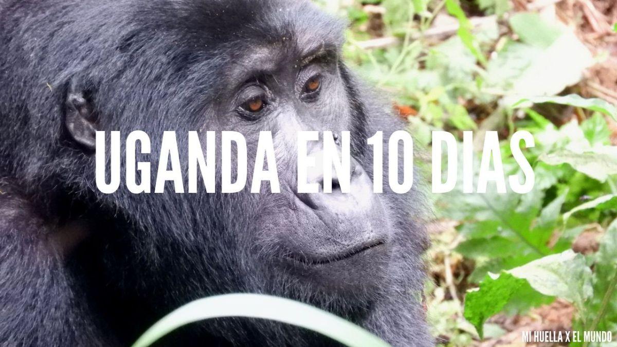 ITINERARIO UGANDA EN 10 DÍAS
