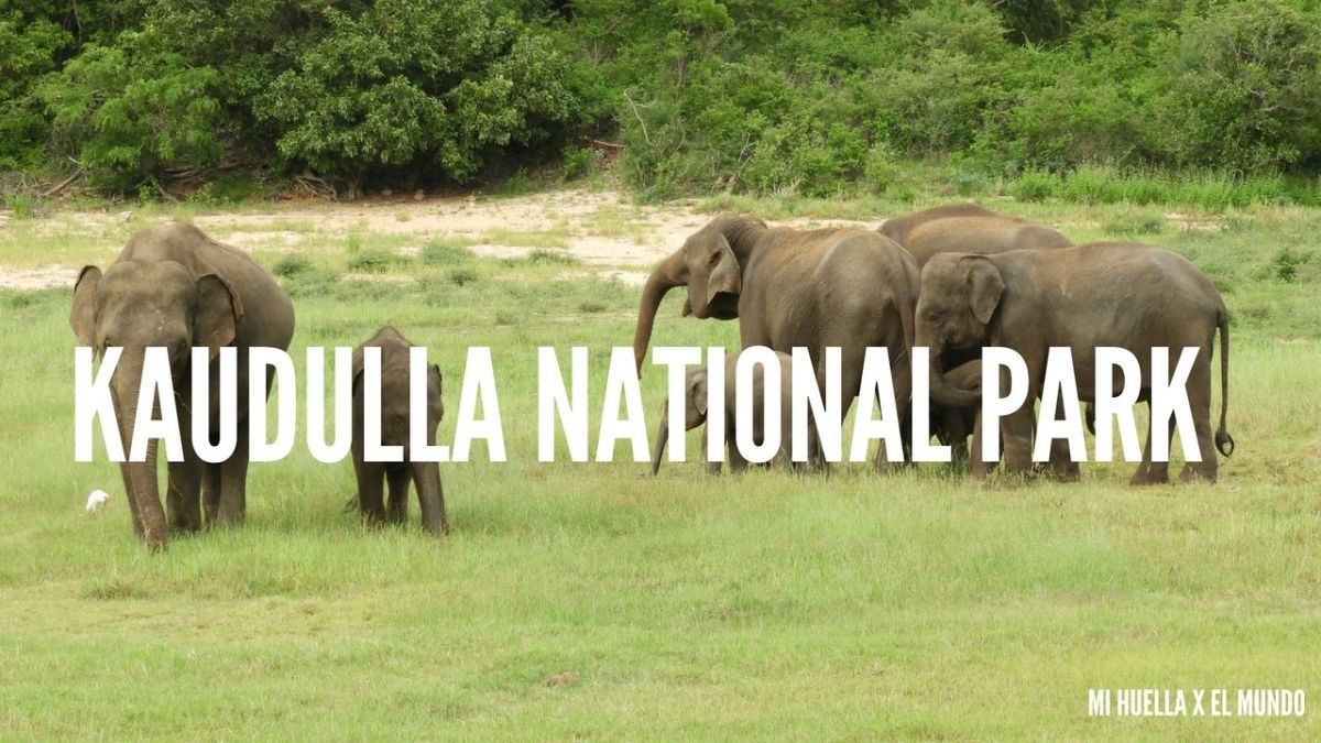 KAUDULLA NATIONAL PARK