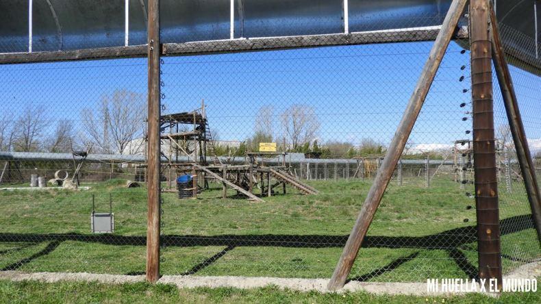 Foto de uno de los recintos de Mona, donde se puede ver a lo lejos una zona de juegos de los chimpancés, rodeado de césèd