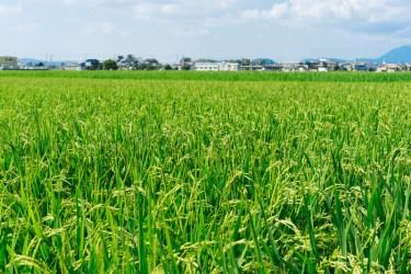 JA共済♪の「JA」の「A」は、英語の【agriculture:農業】