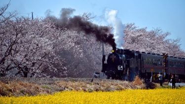 SL機関車の「SL」の語源は、英語の【Steam:蒸気】【Locomotive:原動力】
