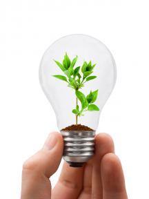 groene-lamp-mijn-onderneming-duurzaam