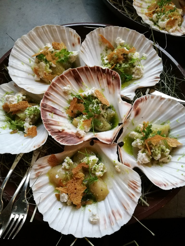 coquille met gerookte ricotta