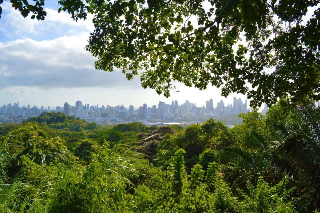 Uitzicht Metropolitan National Park op de skyline van Panama City