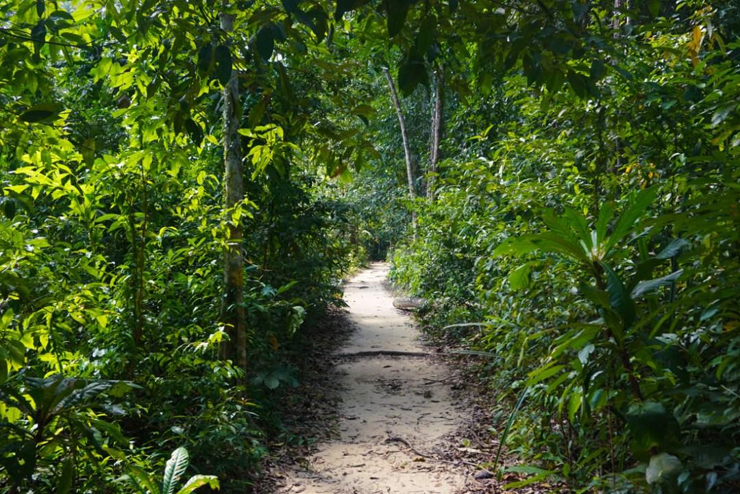 Jungle Pad Koh Rong Samloem