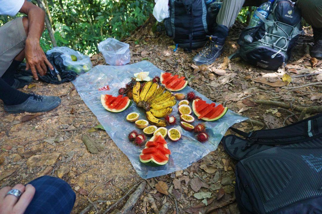 Fruit-jungletrekking-Bukit-Lawang
