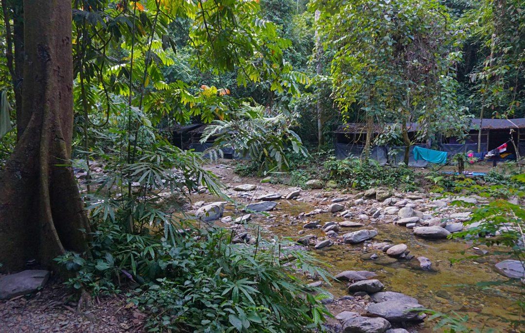 Kamp-jungletrekking-Bukit-Lawang