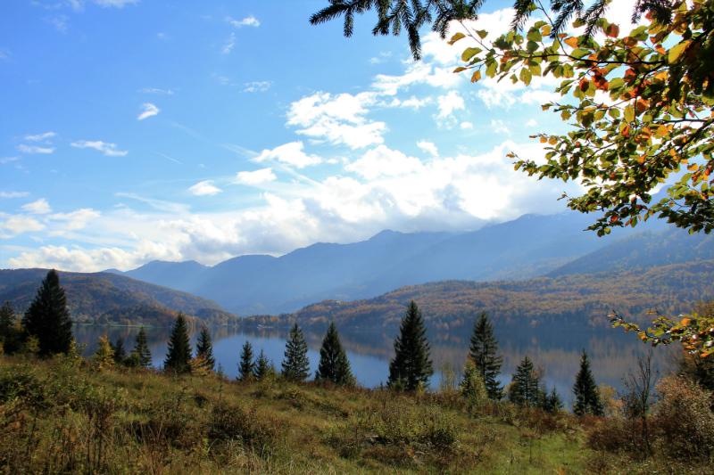 Bohinj, higher level, autumn