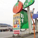 道の駅彩菜茶屋の寒締めホウレンソウは甘くて旨い!