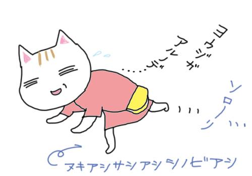 shinobiashi