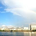素敵なBBQと巨大虹に感動!BBQはまだある!