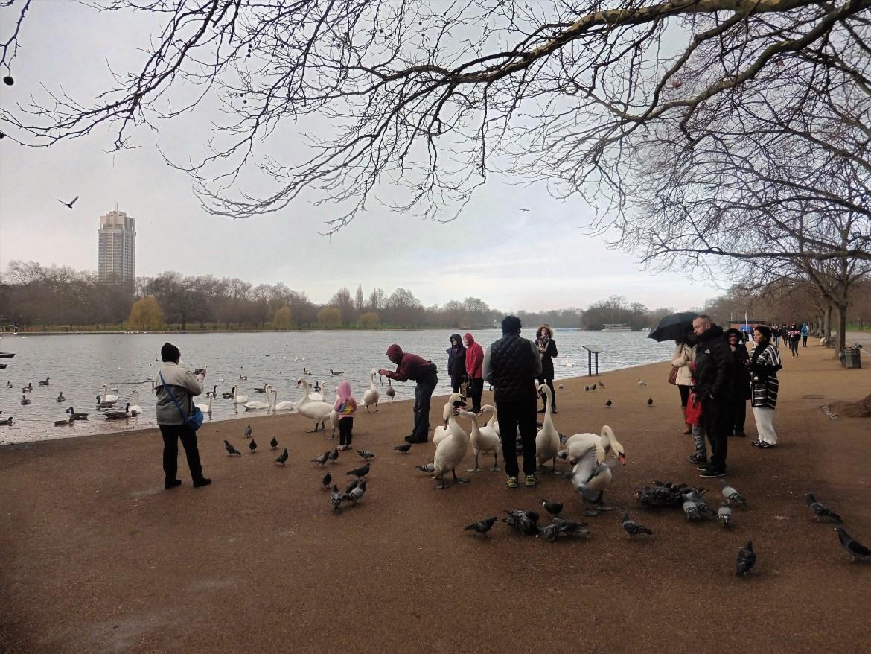 Un lac dans Hyde Park, Londres