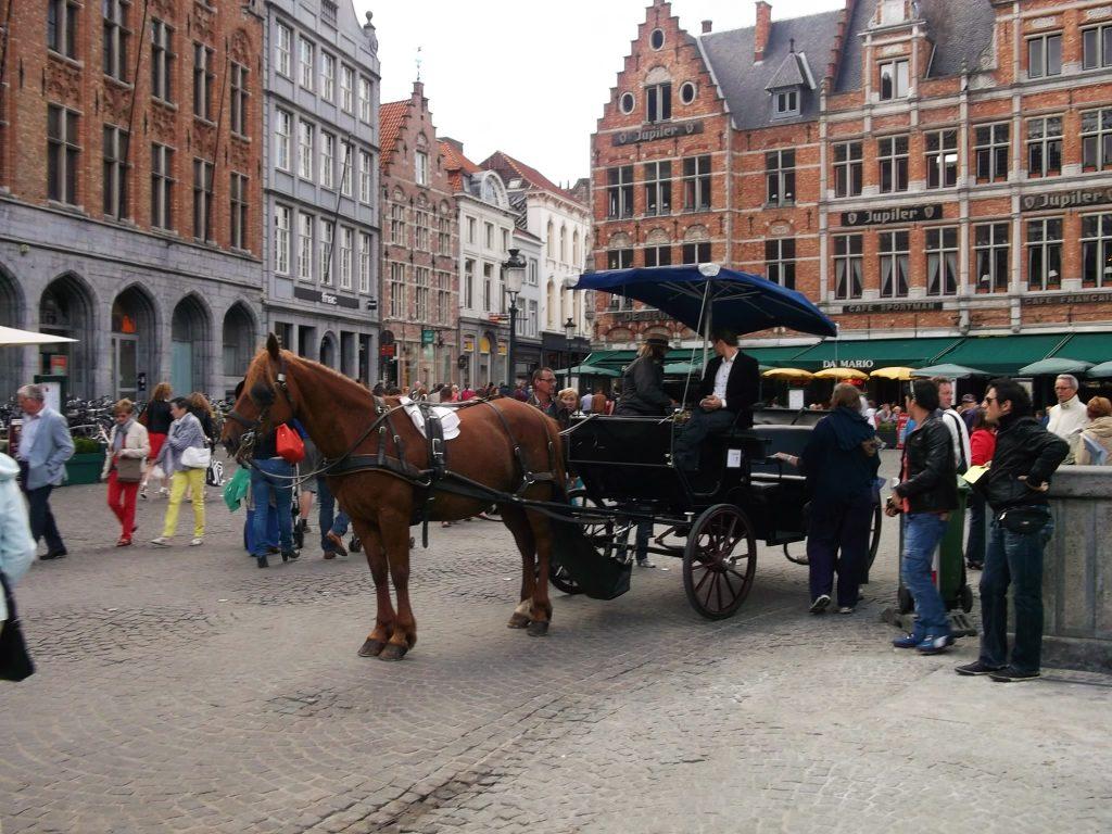 Cheval, Bruges