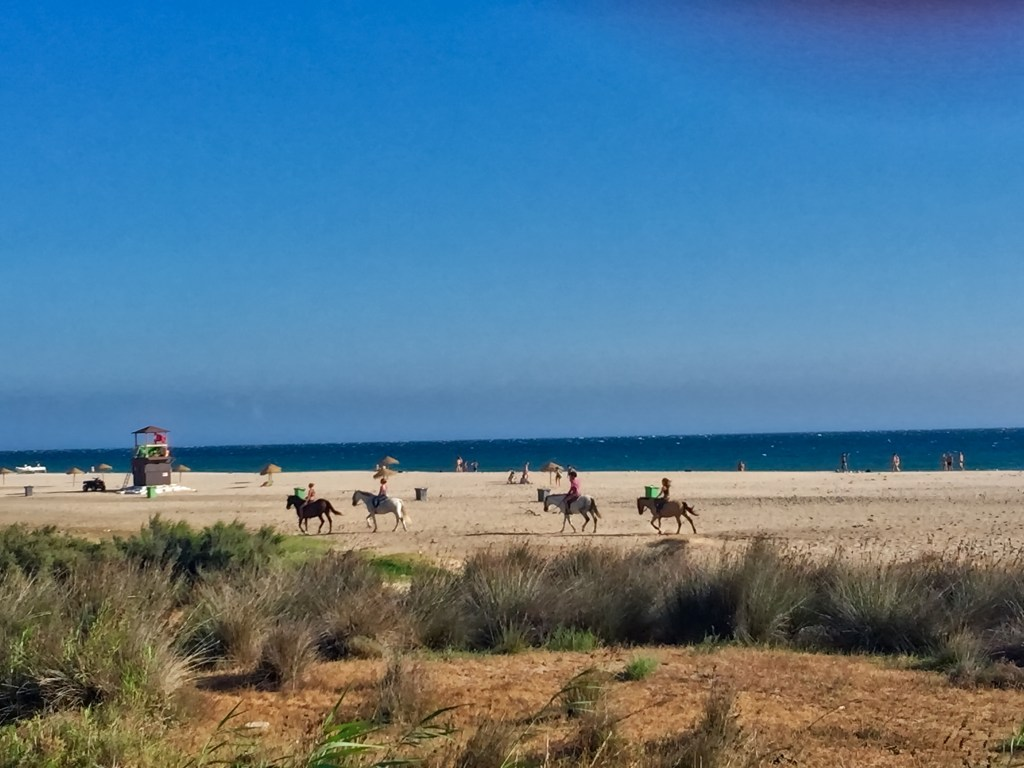 plage de Bolonia