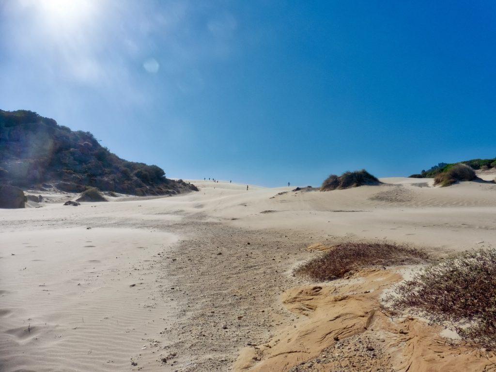 dunes plage de Bolonia